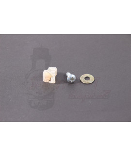 Vite con tassello in plastica fissaggio nasello Vespa PX 125, 150, 200